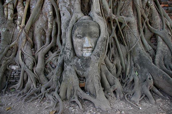 Papier peint d coration bouddha ayutthaya izoa for Decoration chambre thailandaise