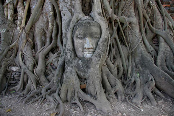 Décor chambre zen Bouddha Ayutthaya noir et blanc