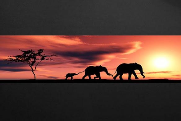 Papier peint Lé déco Famille éléphant