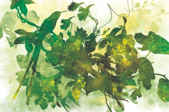 tableau decoration interieur oiseau sur branche