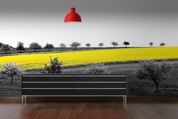poster mural paysage blé