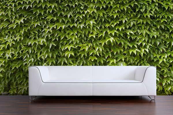 papier peint trompe l 39 oeil feuillage. Black Bedroom Furniture Sets. Home Design Ideas