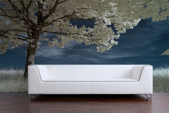 decoration mur paysage arbre fleuri