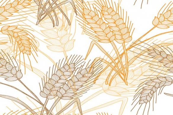 papier peint tendance epi de blé