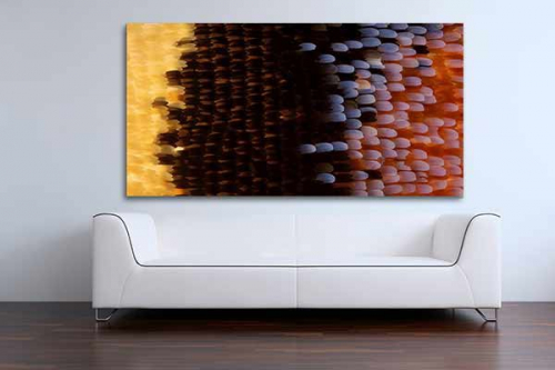 deco mur contemporain ailes papillon
