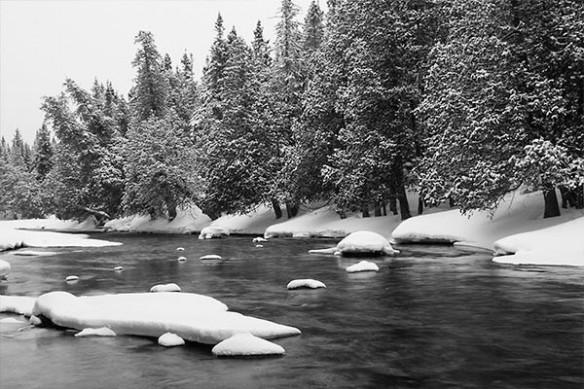 paysage d'Hiver riviere sapin sous la neige
