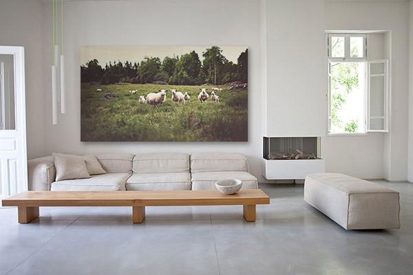 Tableau nature moutons izoa - Tableau deco ...