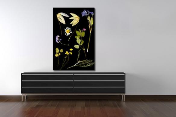 Tableau design Herbier