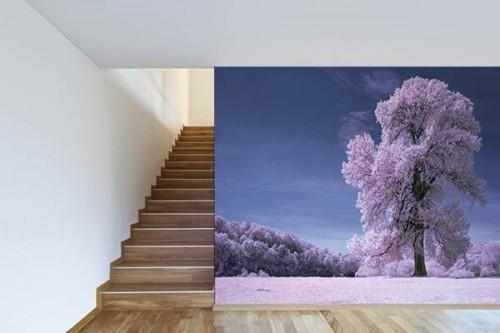 Poster mural déco Poussière de cerisiers