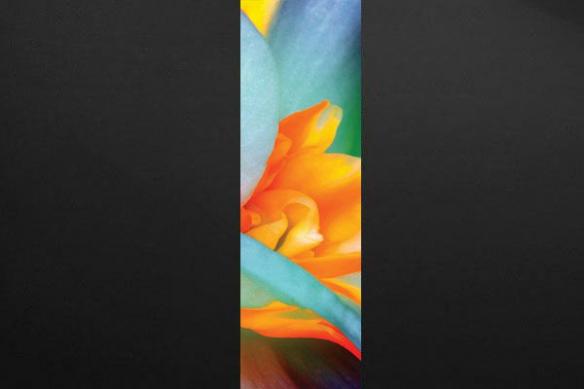 Trompe oeil mural interieur fleur Naïades