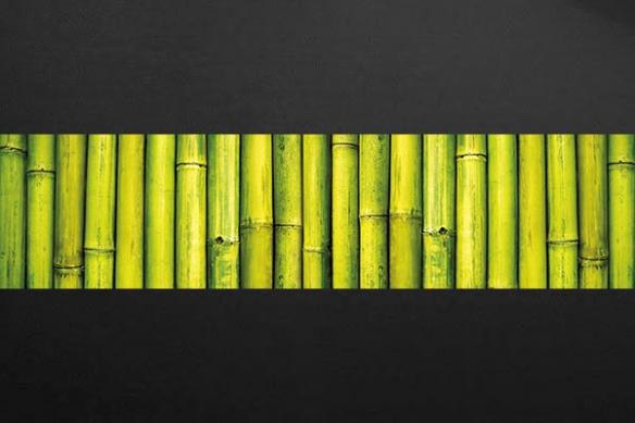 Barrière de Bambous