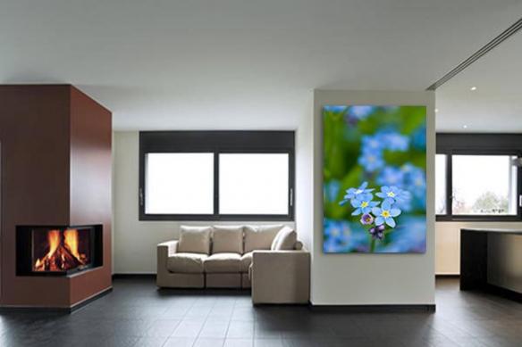 Tableau déco Fleur Bleue