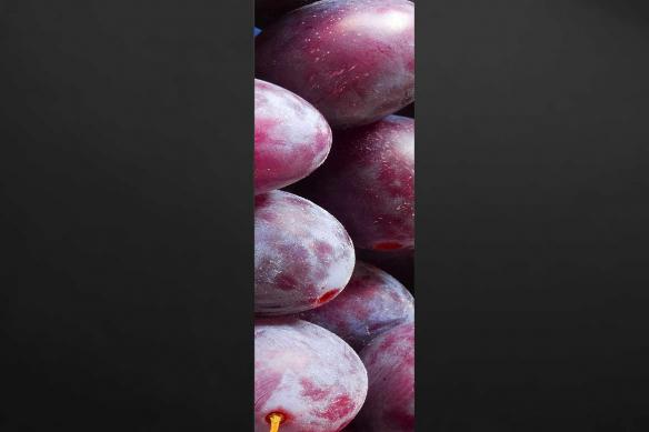 poster Salle manger Prune