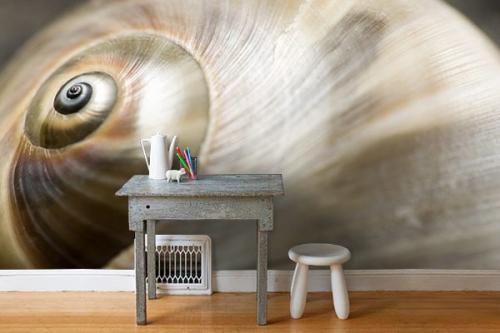 Papier peint chambre Escargot tout chaud