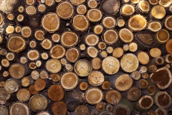 Stères de bois déco murale