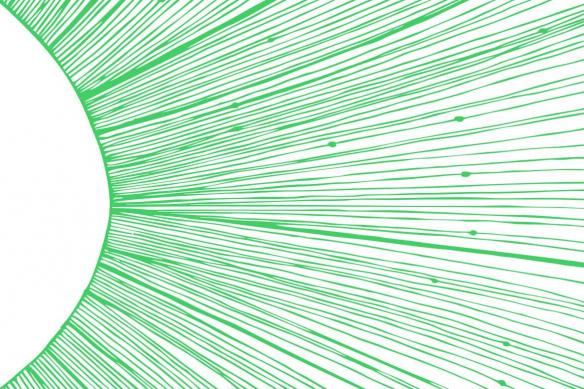 Sun Rays vert