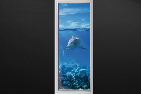 trompe l 39 oeil porte requin izoa. Black Bedroom Furniture Sets. Home Design Ideas