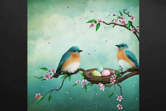deco zen oiseaux