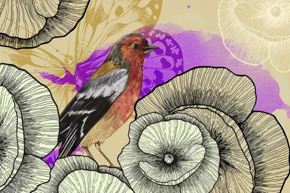 Papier peint chambre oiseau violet