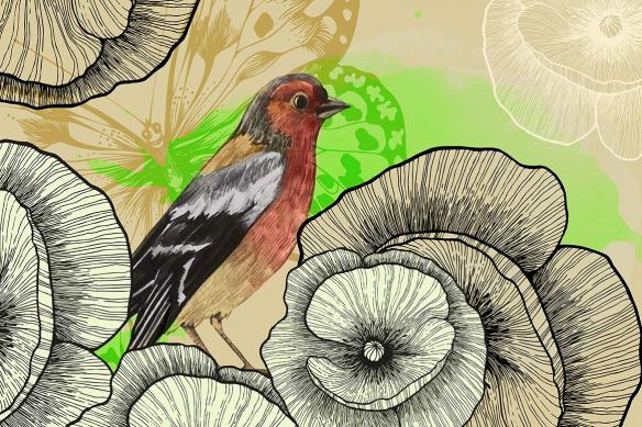 Tapisserie chambre oiseau vert