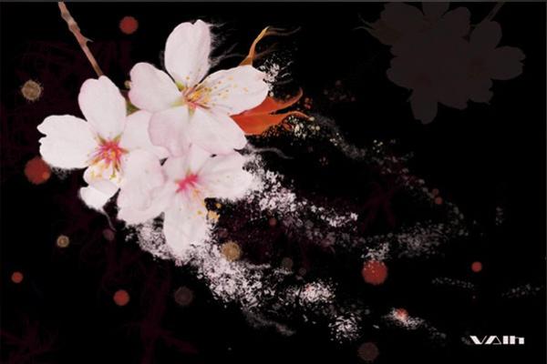 tableau fleurs de cerisiers by vain. Black Bedroom Furniture Sets. Home Design Ideas