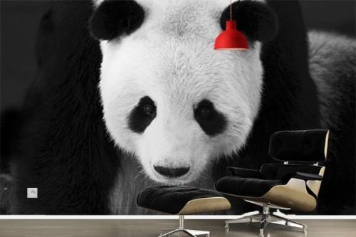 Papier peint design noir et blanc Panda
