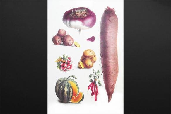 Toile déco Légumes du Jardin