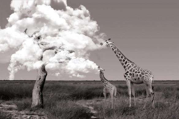 toile moderne girafe sepia