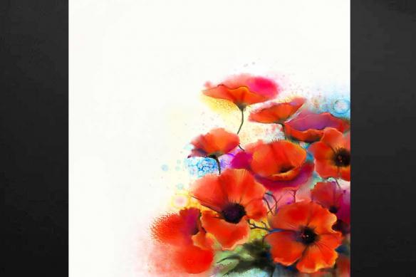 coquelicots fleuries