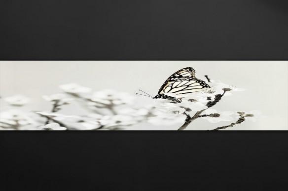 Crédence déco sur mesure Papillon