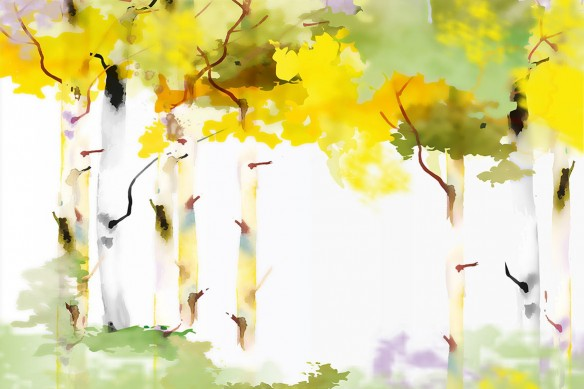 Tableau mural Bouleau blanc en automne