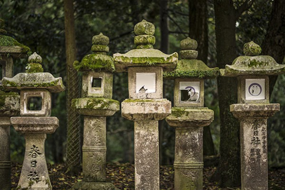 Poster xxl Lanternes japonaises
