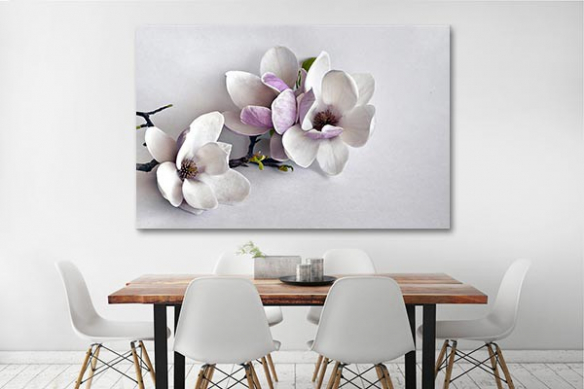 Tableau décoration Blossom magnolia