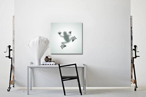 Toile imprimée Ombre grenouille