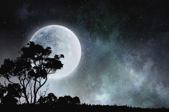 tapisserie murale Pleine Lune Serengeti