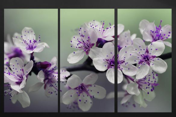 Triptyque Fleurs