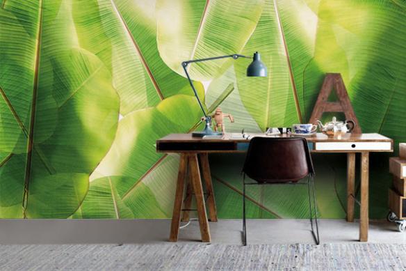 Papier peint tropical Bananier