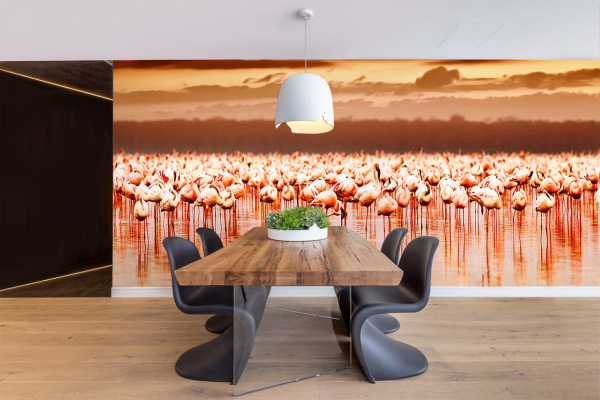papier peint flamants roses couch de soleil. Black Bedroom Furniture Sets. Home Design Ideas