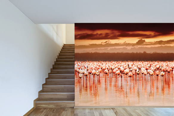 Papier peint moderne Flamants Roses couché de soleil