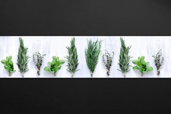 Crédence pour cuisine Plantes aromatiques