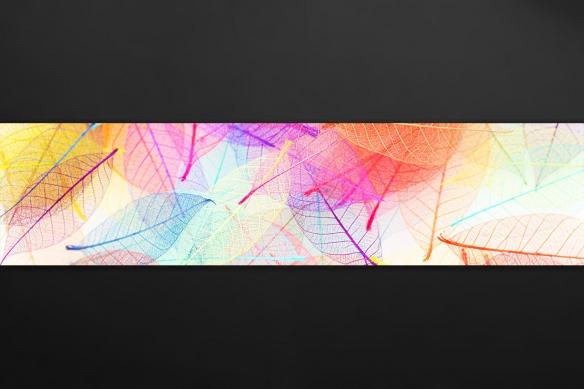 Décoration murale cuisine Folie colorée