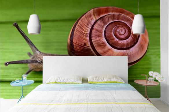Papier peint moderne chambre Tony l'Escargot