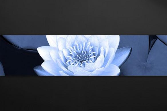 Crédence déco Lotus sur nénuphars
