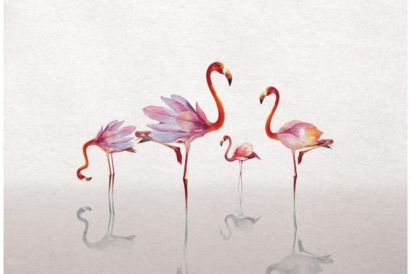 Cadre déco flamants rose blanc