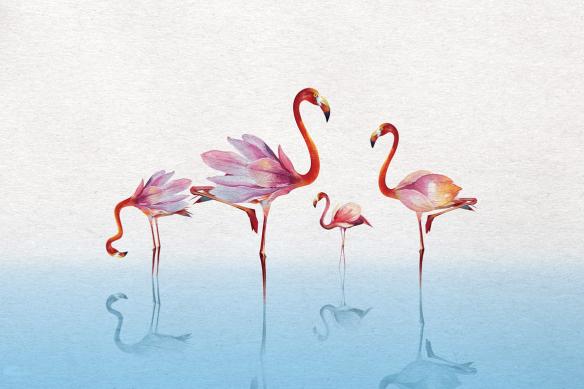 papier peint luxe flamants rose bleu ciel