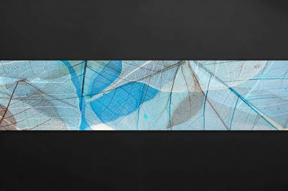 plaque protection cuisine feuilles bleutées
