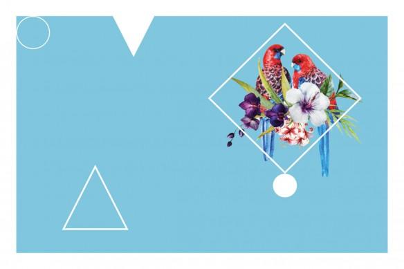 Tableau déco Perroquet tropical bleu ciel