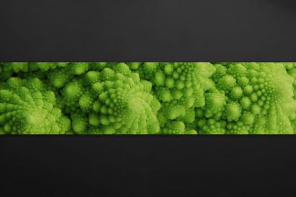 Crédence verte pour cuisine Brocoli