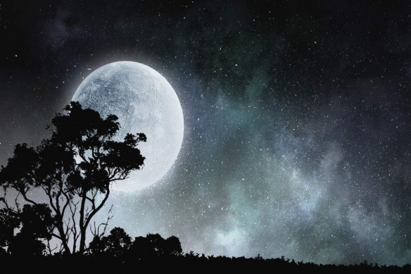 tableau sur chassis pleine lune serengeti
