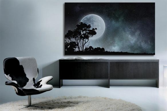 tableau impression sur toile pleine lune serengeti